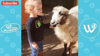 Try Not To Laugh Or Grin While Watching Funny Kids & Animals Video Compilation - Vine Wordlaugh