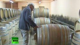 Правила виноделов выучат иностранцы
