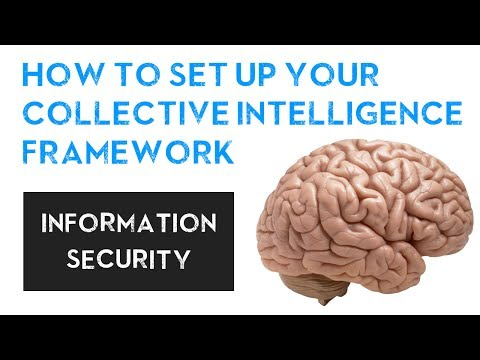 How To Set Up Your Collective Intelligence Framework