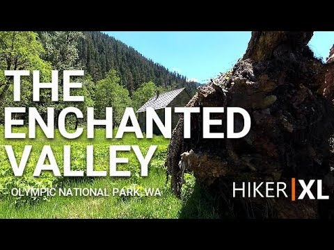 The Enchanted Valley Trail - Olympic National Park