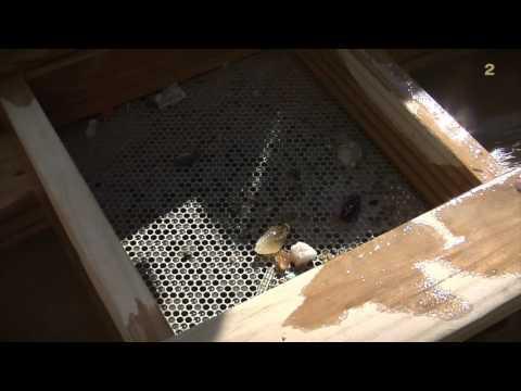 Hc Mining Footage 1