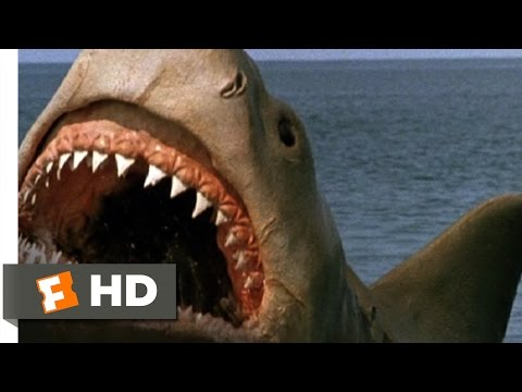Jaws: The Revenge (8/8) Movie CLIP - Killing the Beast (1987) HD from YouTube · Duration:  3 minutes 4 seconds
