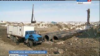 видео Тазовское месторождение