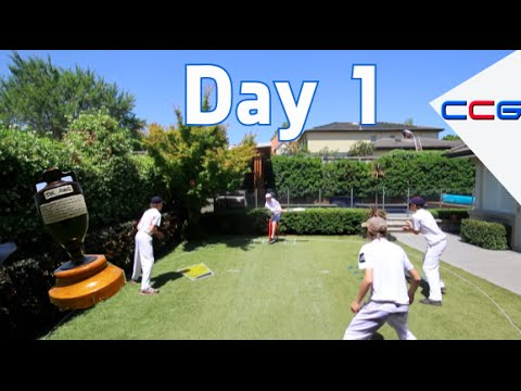Backyard Cricket Ashes Day 1