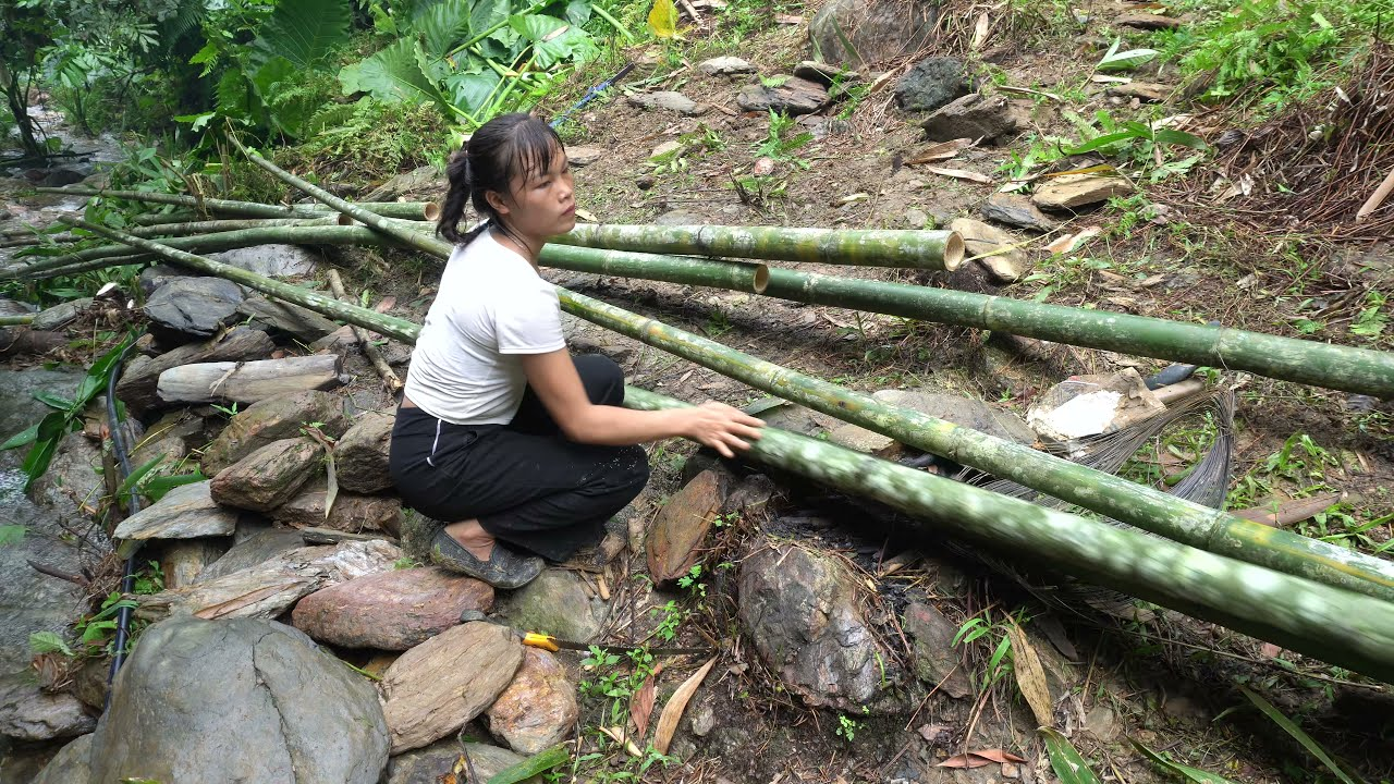 FULL VIDEO: Solo Bushcraft in 150 Days Build Bamboo House And Project Completion, LIVING OFF GRID