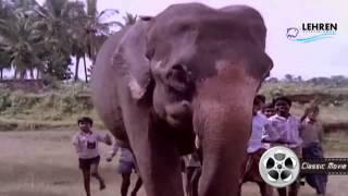 Aanachandam | Gajakesariyogam | Malayalam Movie Song