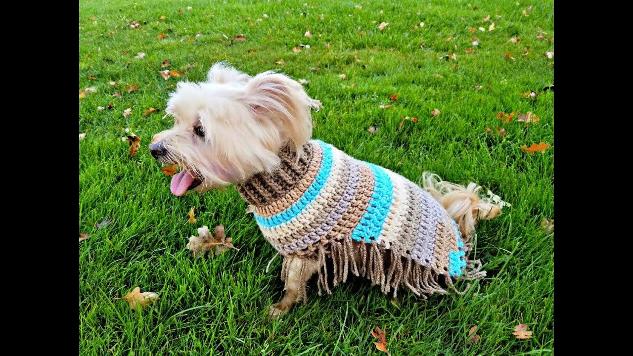 Hazel\'s Autumn Poncho   Crochet Tutorial  Dog Poncho - YouTube