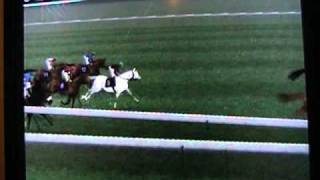 Gallop Racer 2006 Sprinters cup
