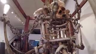 ハンニバルの猟奇的シーンもポップに再現できちゃう始末。「頭蓋骨ボウル」がナウオンセール!