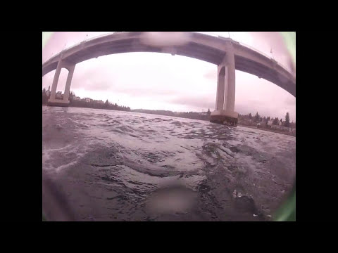 Drift Diving Wa Narrows Bridge