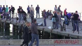 Керчь.Набережная.Рыбачки на пирсе.Штиль.Керченский мост.
