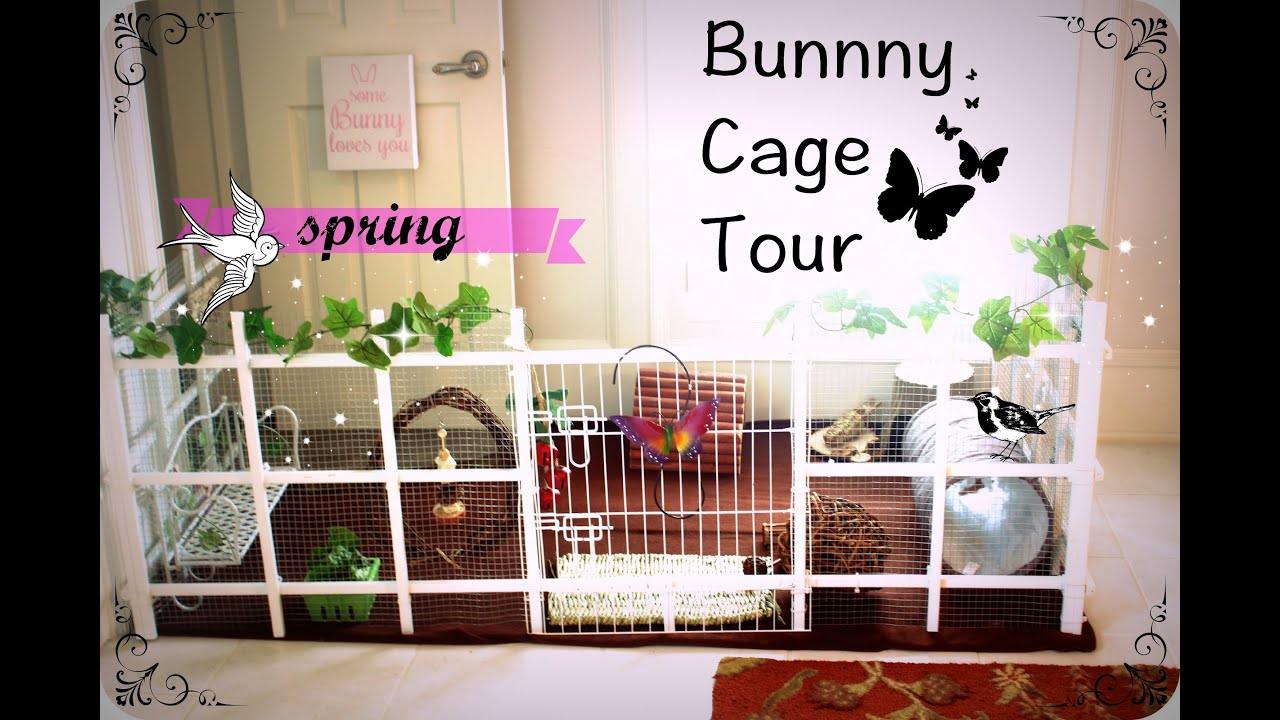 Bunny Cage Decor Home Decorating Ideas