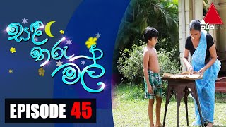 සඳ තරු මල් | Sanda Tharu Mal | Episode 45 | Sirasa TV Thumbnail