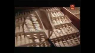 Documental Alfred Kinsey,  El científico del Sexo (2/6)