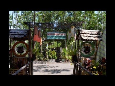 Bakhawan Eco park Kalibo