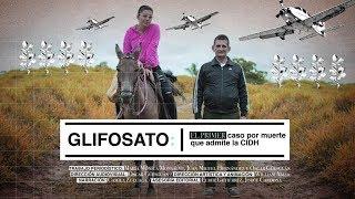 Glifosato: el primer caso por muerte que admite la CIDH | El Espectador