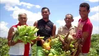 Garantia Safra é liberado para agricultores de Alto Santo, Quixeré