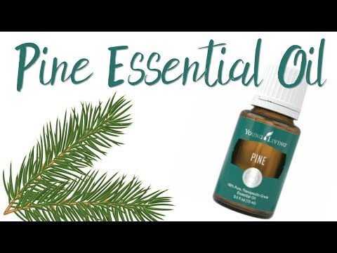 pine-essential-oil---young-living