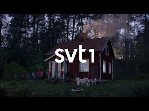 SVT1 Idents (2017) (HD)