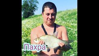 Рыбалка на Пахре в начале лета
