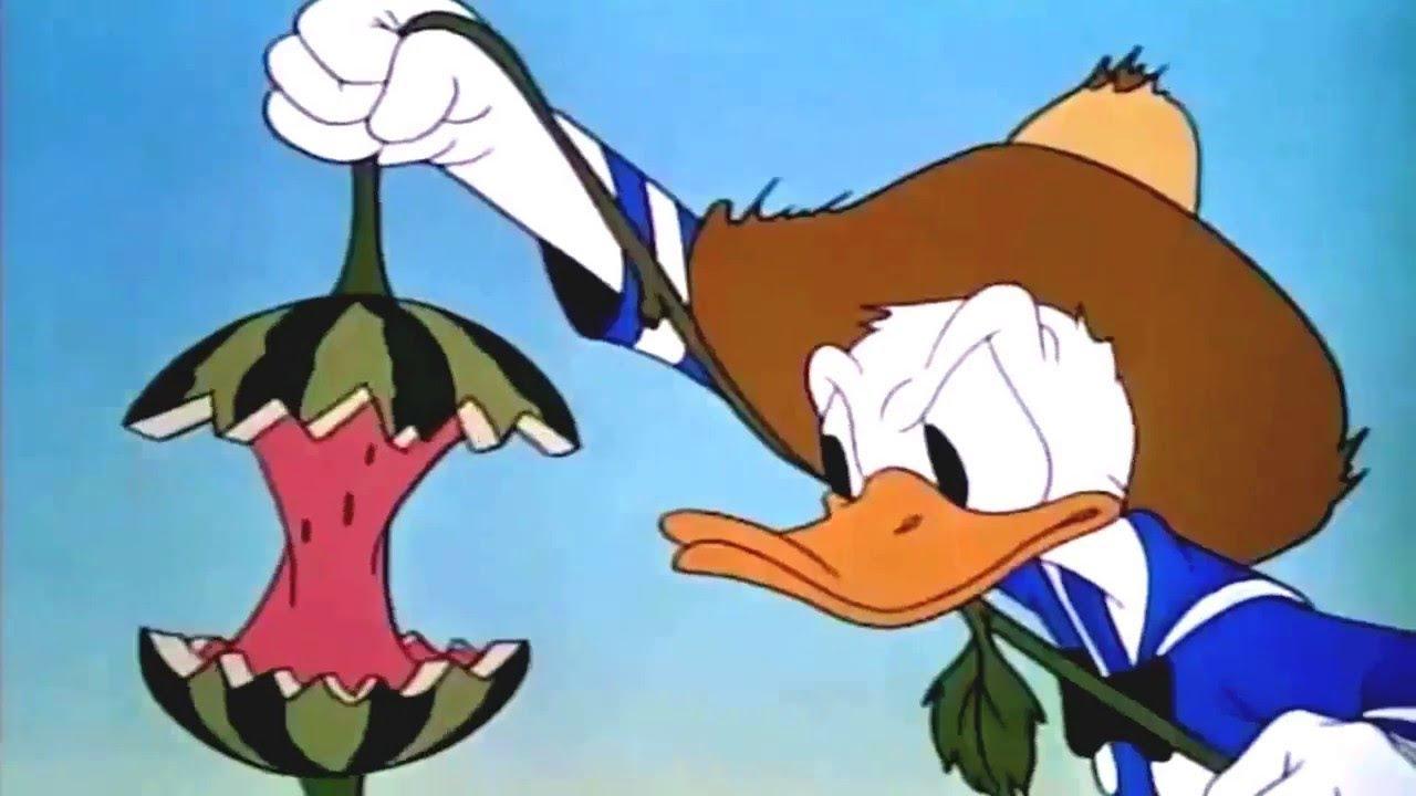 Phim Hoạt Hình Vịt Donald Hay Nhất 2017 [Tập 1] – Chú Vịt Donald Vui Nhộn