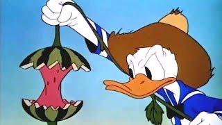 Phim Hoạt Hình Vịt Donald Hay Nhất 2017 [Tập 1] - Chú Vịt Donald Vui Nhộn
