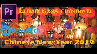 FeiyuTech G6 Plus | Panasonic GX85 | Cinelike D | Chinese New Year 2019