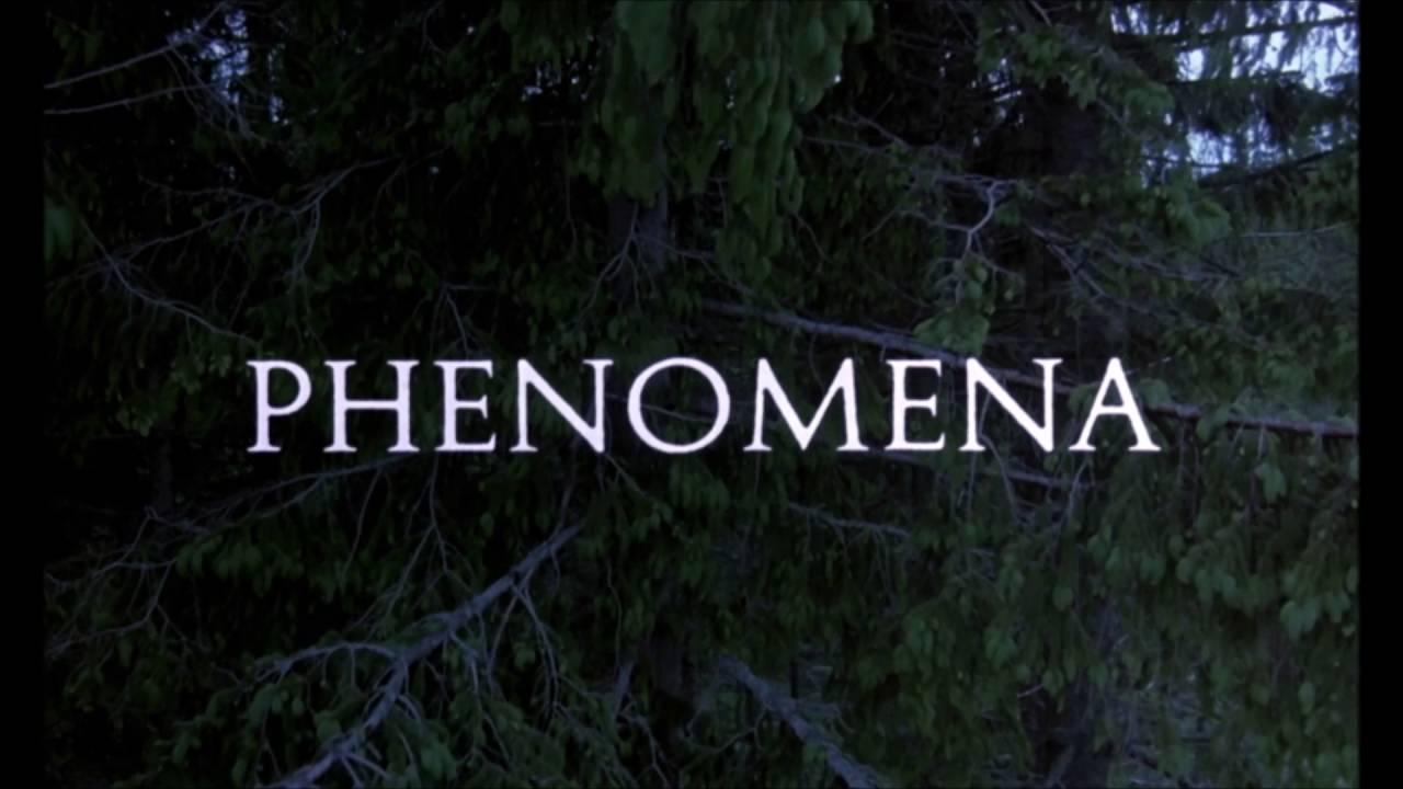 phenomena torrent