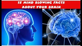 15 Interesting Facts about your brain explain in Telugu || Telugu