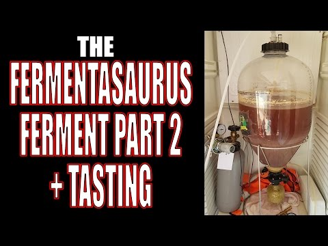 The Fermentasaurus A Hands On Review Doovi