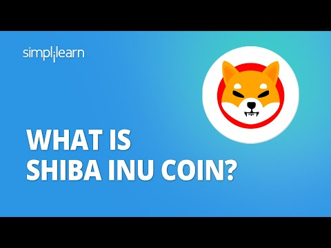 Exploring the Journey of the Shiba Inu Coin