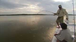 Everglades Monster Tarpon Fishing with DOA Lures