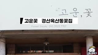 경산꽃집 옥산동 고운꽃 [제품협찬]