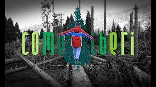 COMEALBERI - cortometraggio sull'alluvione di fine ottobre nel Bellunese 2018