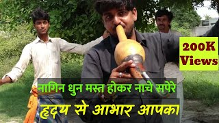 Sunday Special Music By Snake Charmers, Sapere Ki Been Par Dance
