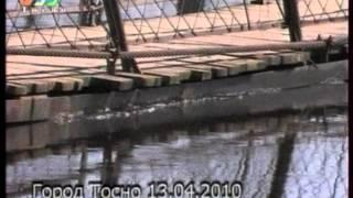 наводнение  в Тосно