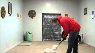 Ohio Dog Training = Fear Biting Dog Being Obedience Trained   Trust Exercise