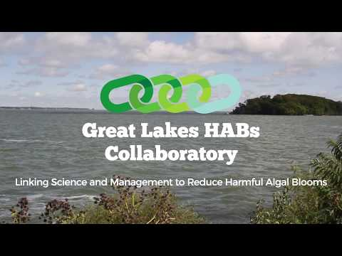 A Collaborative Approach: Linking science and management to reduce harmful algal blooms