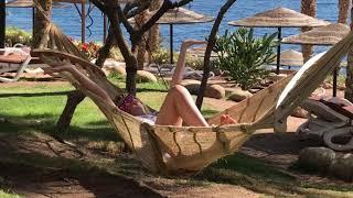 2020 Египет Шарм эль Шейх в марте Sharm el Sheikh Отель Grand Rotana