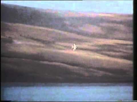 Falklands War-Bomb Alley
