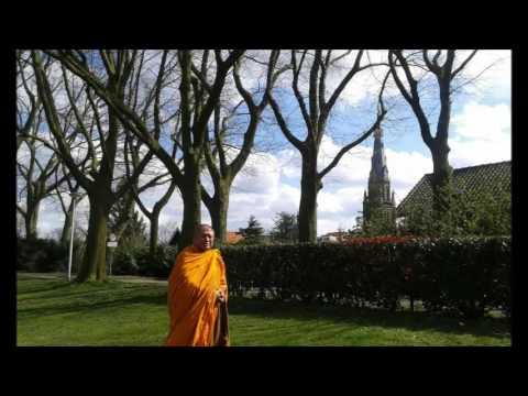 Meditation & Insight  by Ven.Vimokkha
