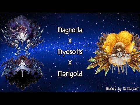 [Mashup] Magnolia x Myosotis x Marigold