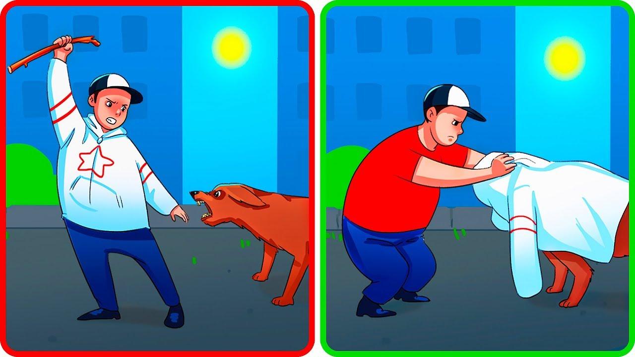 Что Делать, Если на Вас Напала Собака