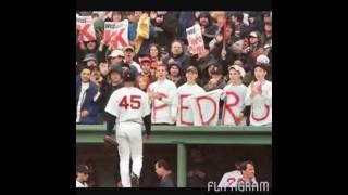 Pedro Martinez #45 Red Sox Tribute/Photo Montage