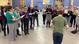 My Pop Choir Lawrence Park Winter Term
