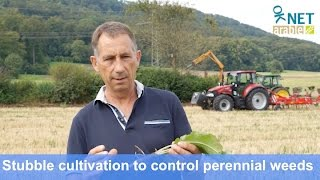 Stubble cultivation to control root-weed in organic agriculture (Nov 2016)