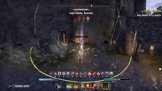 Stam Nb - Solo test dps - 43.3 k - eso cwc