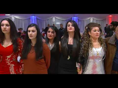 غسان اسعد- رقص كردي نااار  | Hunermend Xesan Essad - Dilana Kurmanci By Star Video thumbnail