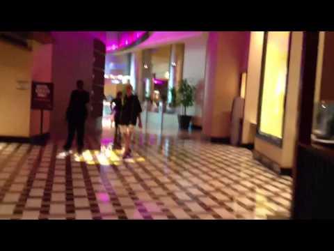 Seminole Hard Rock Hollywood Florida- Hotel & Casino Tour
