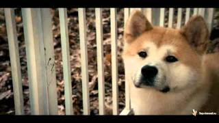 Soundtrack to the movie Hachiko - 20. Hachi